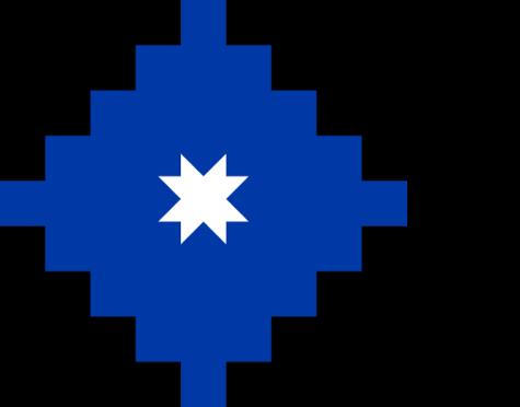 MAPUCHE WALLMAPU